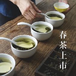 2016春茶上市