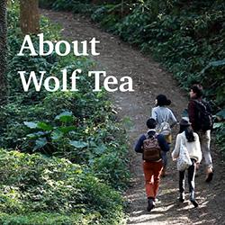 About Tea Brand - Wolf Tea