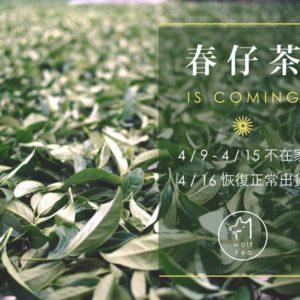 2015訪春茶之旅