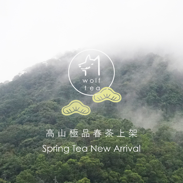 2017高山極品春茶